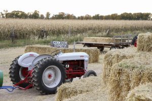 The Corn Cob Express trailers which include a free Hayride and train pulled by tractors at the Corn Maze. (James Richards, Scroll Photography)