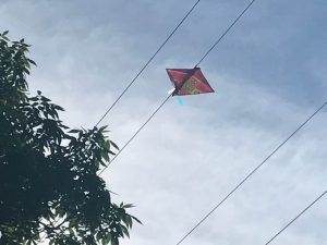 Kite stuck in a power line
