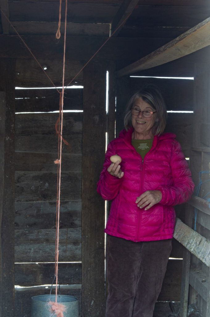 Freeman shows an egg she found from her hens.