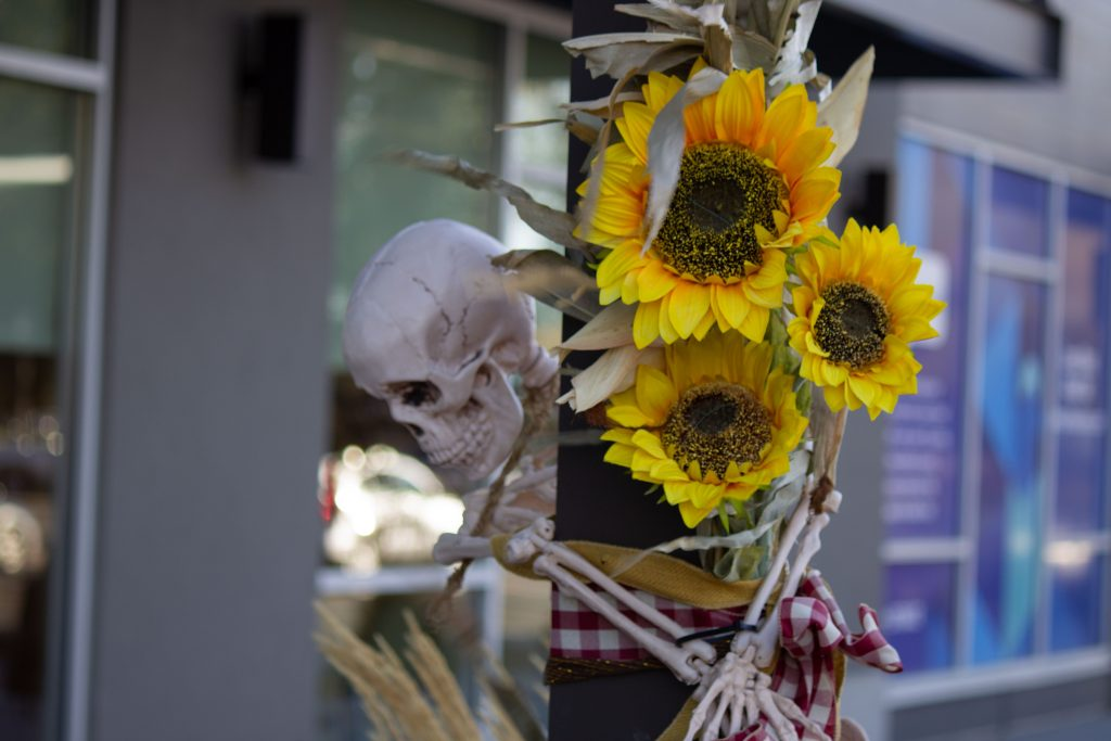 A skeleton grips a light post and sunflowers
