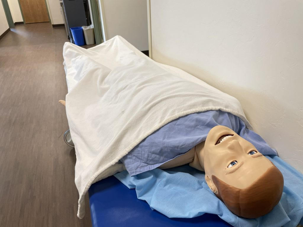 Mannequin used for simulation.